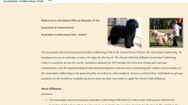 Australian & International Australian Cobberdog Club